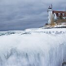 Point Betsie Lighthouse in Winter by Randall Nyhof