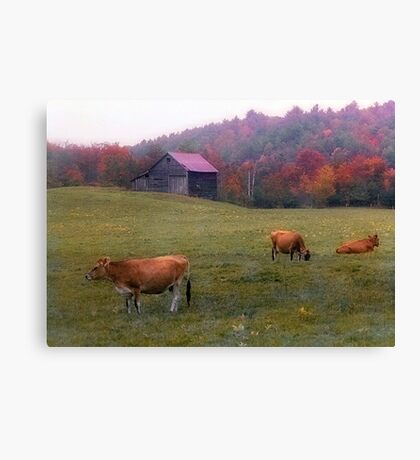 Autumn Pastoral - Greenwood,  Maine Canvas Print