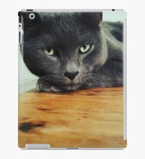 Russian Blue cat iPad Case/Skin