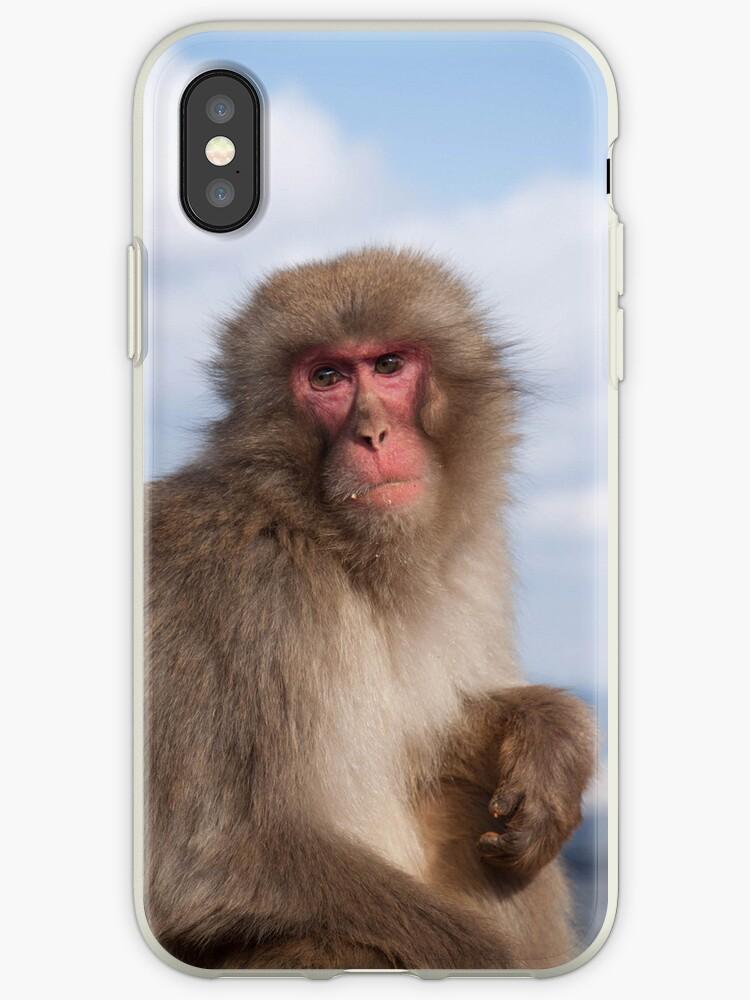 Snow Monkey by Joseph Miller