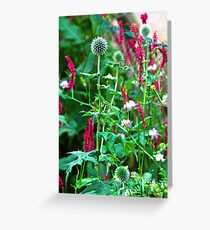 Romantic summer garden with globe thistle Greeting Card