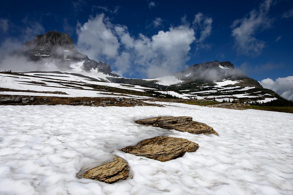 Glacier Stepping Stones by Dan Mihai
