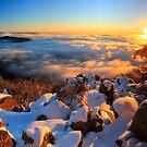 Twilight Snow. Mount Torbreck  by Donovan Wilson