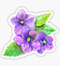 Three Violets Sticker