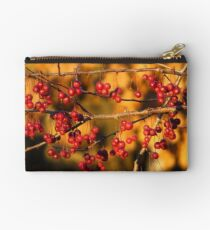 Red and Gold Studio Pouch