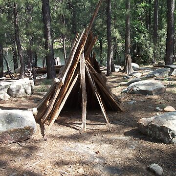 Teepee Visitors of Willows Springs Made by ToGalaxy