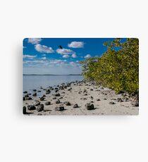 Florida Waterscape Canvas Print