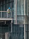 Blue hardhat – some sort of homage to Mondrian by awefaul