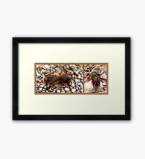 Mole cricket Framed Print