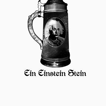 Ein Einstein Stein by jcl3042
