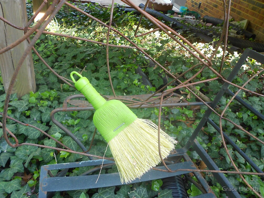 Wired Broom  by Grace Lisbeth