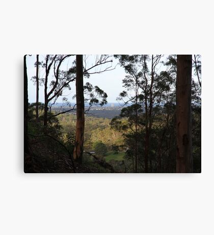 From The Bush To The Beach Canvas Print