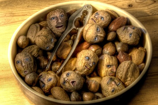 We're all nuts #1 by craig sparks