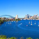 Sydney Harbour by Michael John