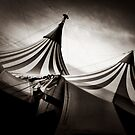 Cirque Tent by Neil Johnson