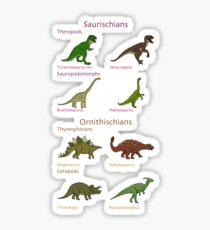 Dinosaur Classification Sticker