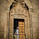 The Window by KerryPurnell