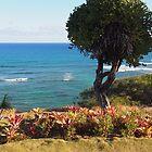 Beach garden: Honolulu, Hawai'i by Sally Kate Yeoman