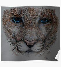 Big Pussycat! Poster