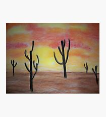 Desert Sunset Photographic Print