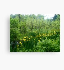 Hidden Patch of Flowers Canvas Print