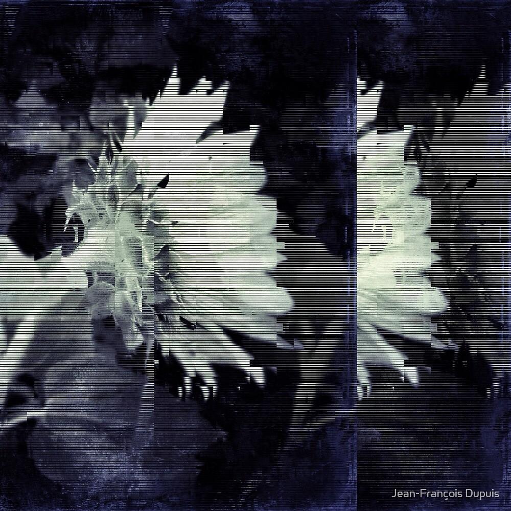 Floral 33 by Jean-François Dupuis