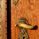 Old Oak Door With Brass Handle and Locks by ivDAnu