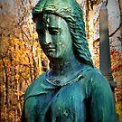 Stone Angel by Sheri Nye