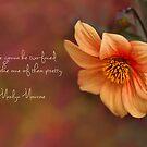 Marilyn Monroe in Words by Marilyn Cornwell