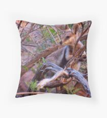 Black Footed Wallaby  Throw Pillow