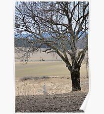 Rural. Spring time. Poster