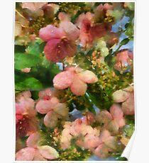 Rococo Blossoms Poster