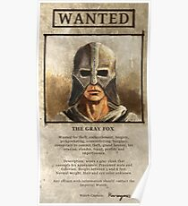 Wanted: The Gray Fox Poster