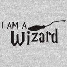I Am A Wizard by Fiona Boyle