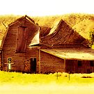 Old Barn by Amy Pehringer