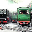 Llanberis Locomotive Shed by Paul  Green