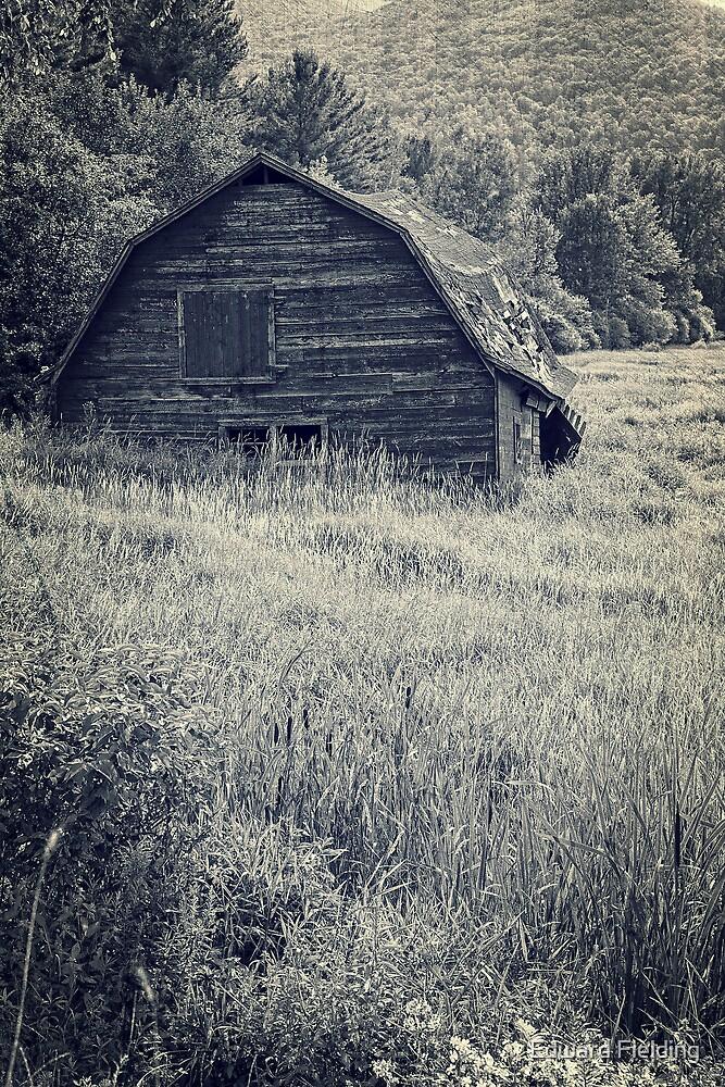 Old Falling Down Barn Blue by Edward Fielding