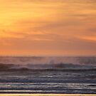 Pacific Ocean at Sunset by Tanya Shockman