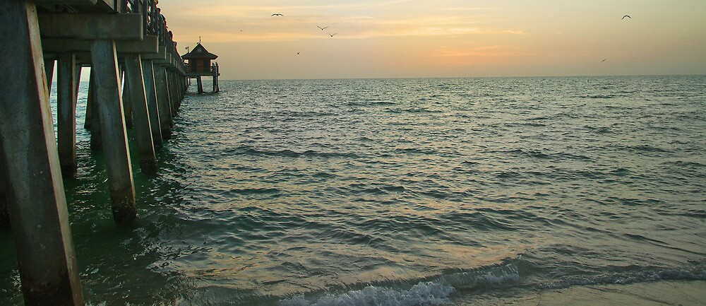 Naples Pier at Dusk by John  Kapusta