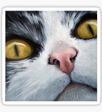 Cat Eyes - original oil painting cat portrait Sticker