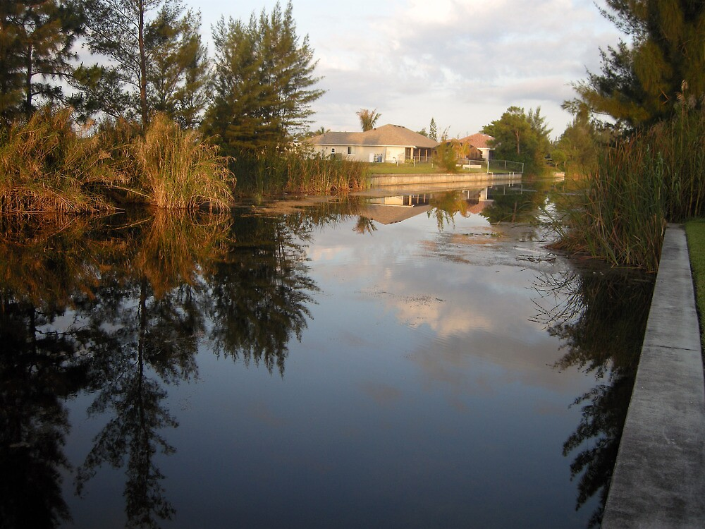 Morning Canal View Cape Coral  by John  Kapusta