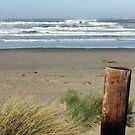 Oregon Beach by Tanya Shockman
