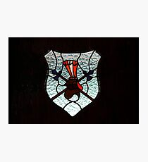 Window Coat of Arms Photographic Print