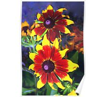 Very bright daisies Poster