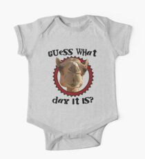 Hump Day Camel - Guess What Day it Is - Wednesday is Hump Day - Parody Camel Kids Clothes