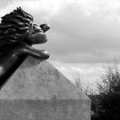 Follow That Lemming! by dgscotland