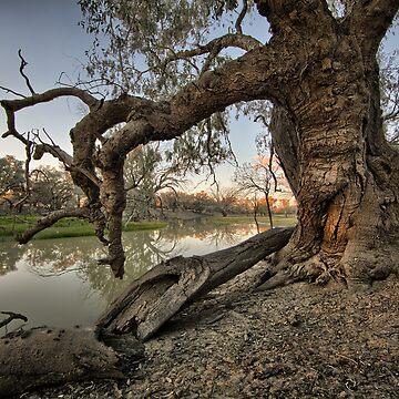 Billabong - Back O Bourke - NSW by moronif