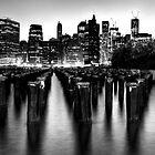 Brooklyn Bridge Park by Roddy Atkinson
