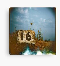 #16 Canvas Print