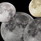 4 Moons by Tori Snow